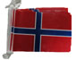 Norway bunting