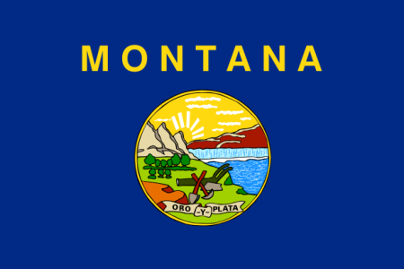 Montana state flag - usa