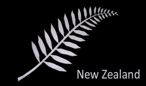 New Zealand Fern Flag