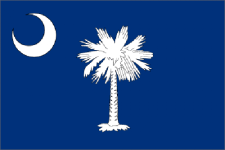 South Carolina state flag - usa