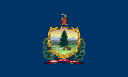 Vermont state flag - usa