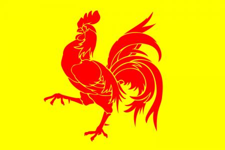 Wallonia flag