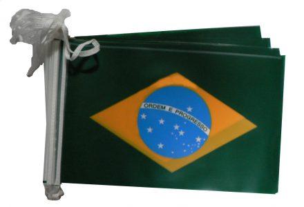 Brazil bunting
