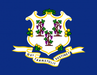 Connecticut state flag - USA