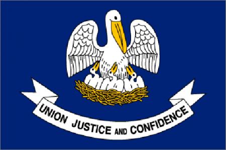 Louisiana state flag - usa