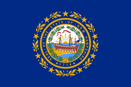 New Hampshire state flag - usa