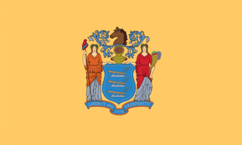 New Jersey state flag - usa