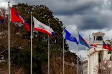 Flagpoles; aluminium and fibreglass flag poles for sale